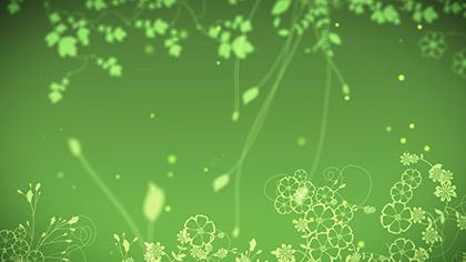 Firefly Foliage