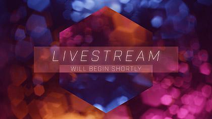 Bokeh Shapes Livestream