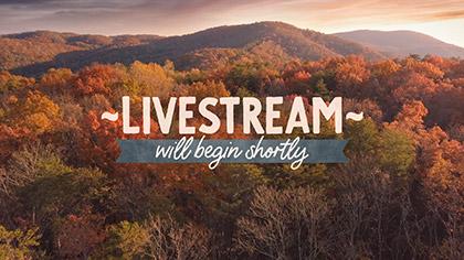 Epic Autumn Aerial Livestream