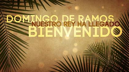 Domingo De Ramos Collection