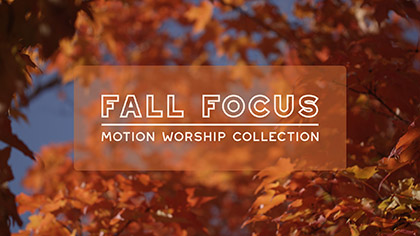 Fall Focus Collection