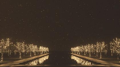 Christmas Gold Reflecting Pool
