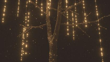Christmas Gold Tree Closeup