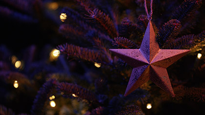Christmas Pines Star Ornament