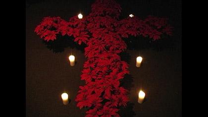 Poinsettia Cross