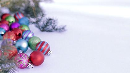 Snowy Bulbs