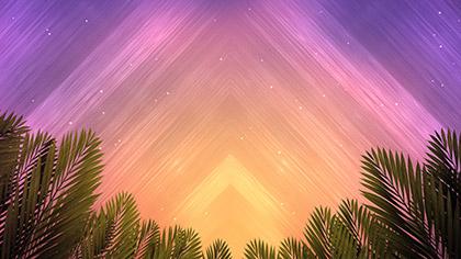Vivid Fibers Palm Branches