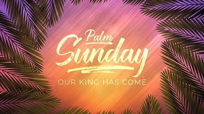 Vivid Fibers Palm Sunday