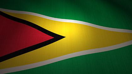 Guyana Flag Waving
