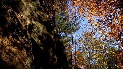 Autumn Longplay 2