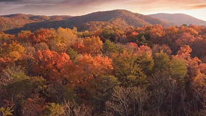Epic Autumn Aerial Longplay