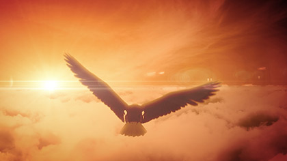 Bald Eagle Soaring Clouds
