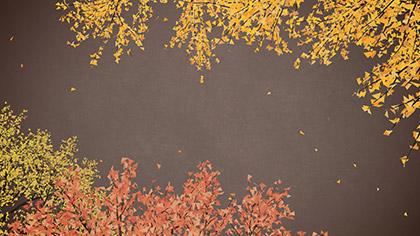 Digital Autumn Rich Brown