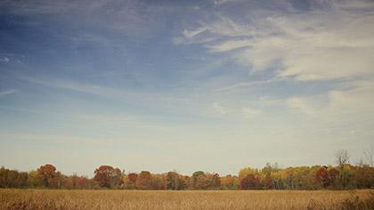Fall Colors Blue Sky