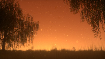 Summer Fireflies Golden Willow