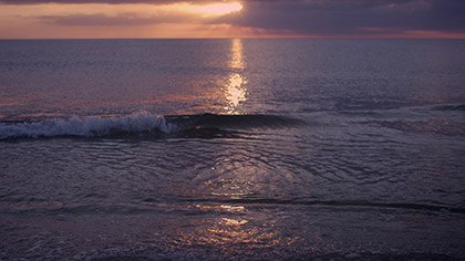 Sunset Surf Purple Gold