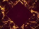 Sparkle Golden Diamond