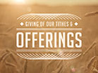 Summer Wheat Tithes Offerings