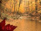Autumn Countdown 2