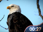 USA Patriotic Countdown