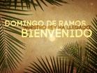 Domingo De Ramos Bienvenido