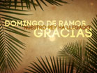 Domingo De Ramos Gracias
