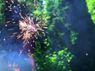 Fireworks Daytime