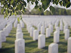 Military Cemetery Leaves Wind