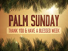 Sky View Palm Sunday Thanks