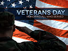 Veterans Day Soldier Flag