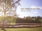 Thanksgiving Tree Worship Intro