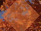Fall Focus Golden Orange Diamond
