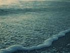 Sunset Surf Teal Green