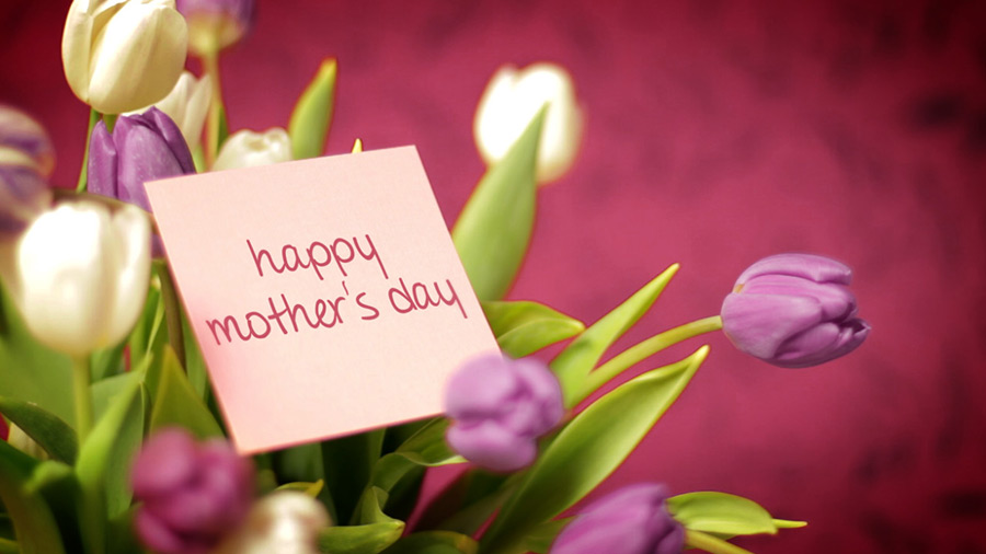 Happy Mothers Day Tulips