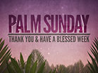 Palm Sunday Motions